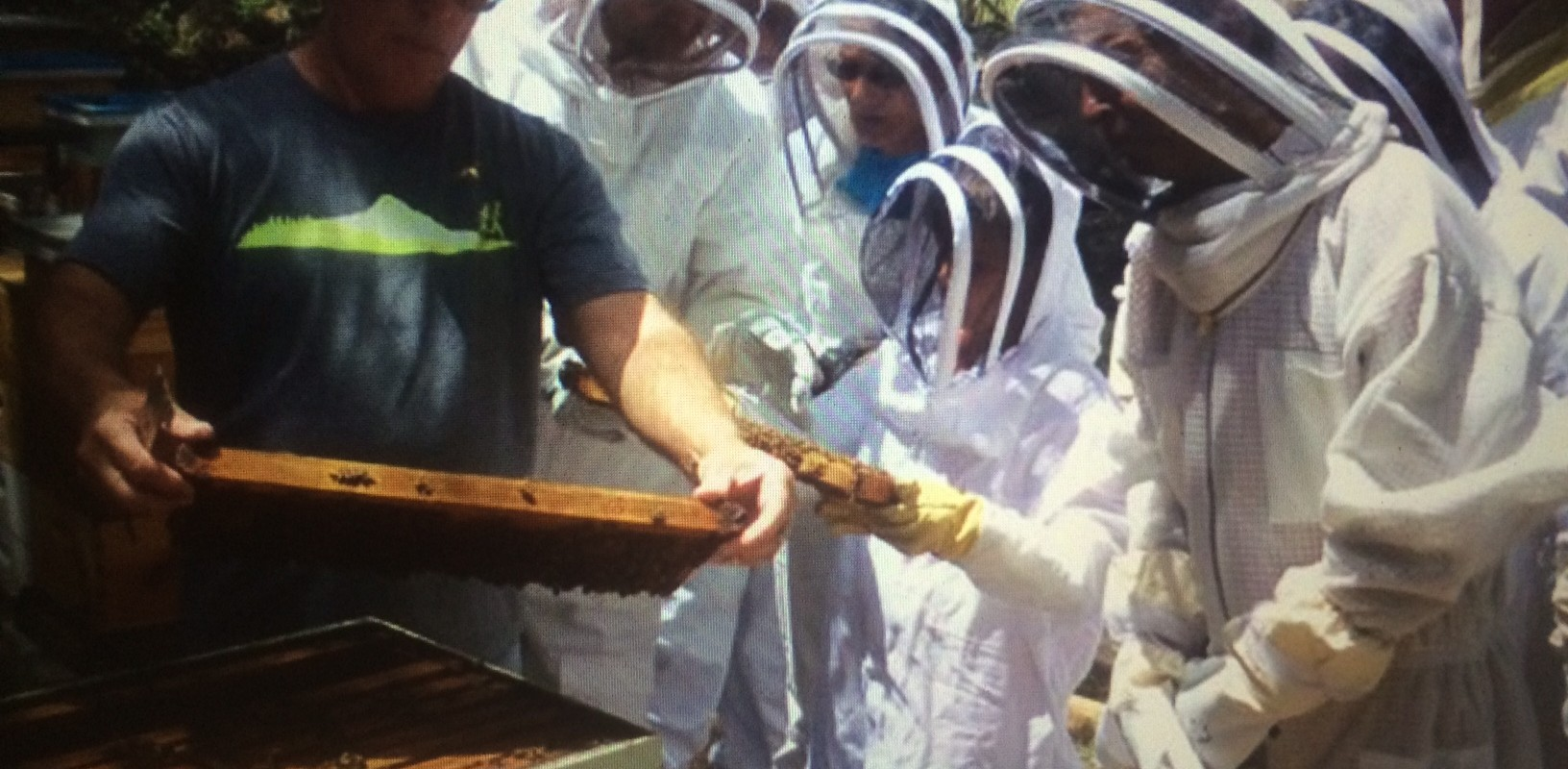 Permalink to: Learning More With Beekeeping Videos